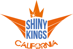 Shinykings California - best motorcycle & car quick detailer.